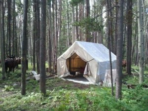 wall tent elk camp