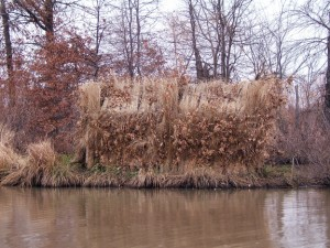camouflage-duck-blind