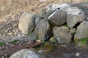 spring-water-filter