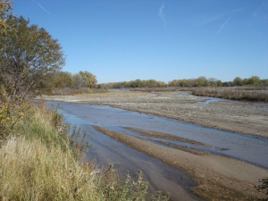 good-waterfowl-habitat