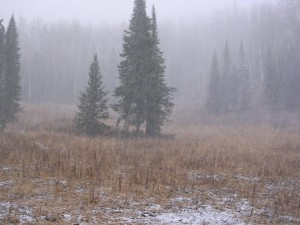mountain-snow-on-an-elk-hunt