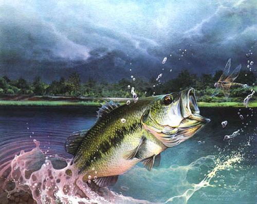 largemouth-bass-jumping