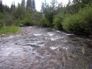 white-river-colorado