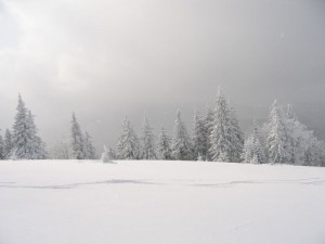cold-winter-storm