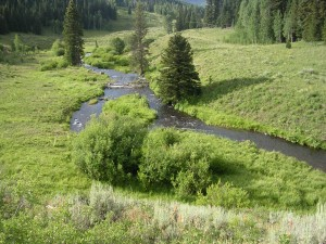 marvine-creek