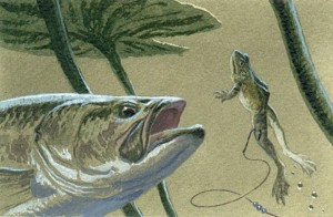 frog_lure_1