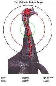 turkey-shotgun-target